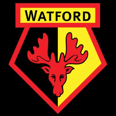 watford-fc.png - Watford Fc PNG