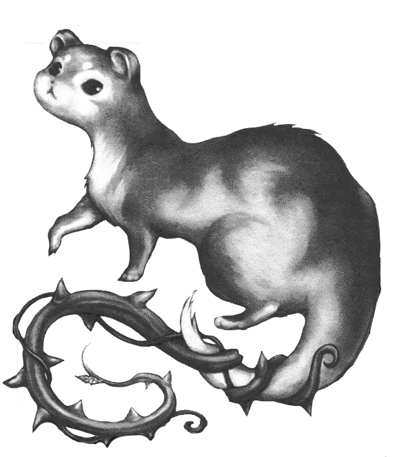 Brier Weasel.png - Weasel PNG HD