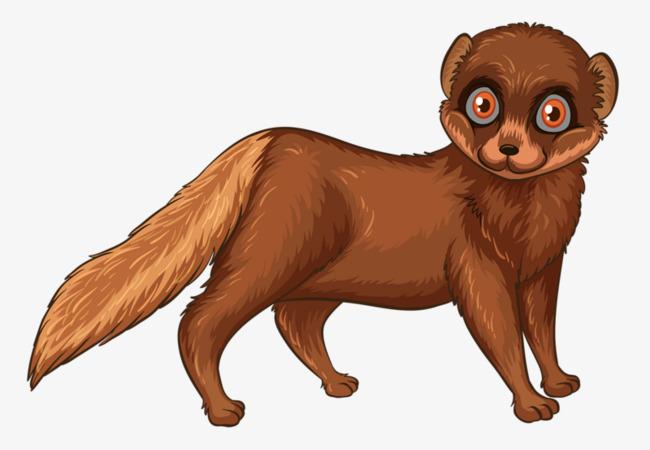Cartoon weasel, Animal, Tail, Cartoon Free PNG Image - Weasel PNG HD