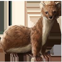 Huge item weasel 01 - Weasel PNG HD