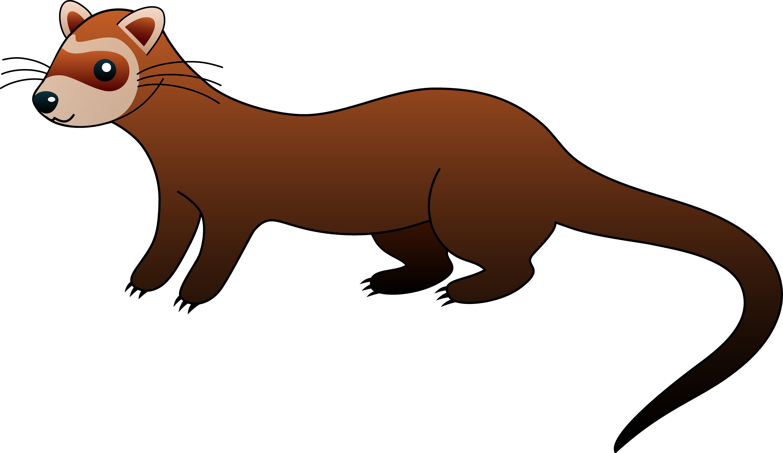pin Weasel clipart cute cartoon #3 - Weasel PNG HD