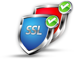 Web Security PNG - 3006