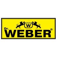 Dr. Weber Logo - Weber Shandwick Vector PNG