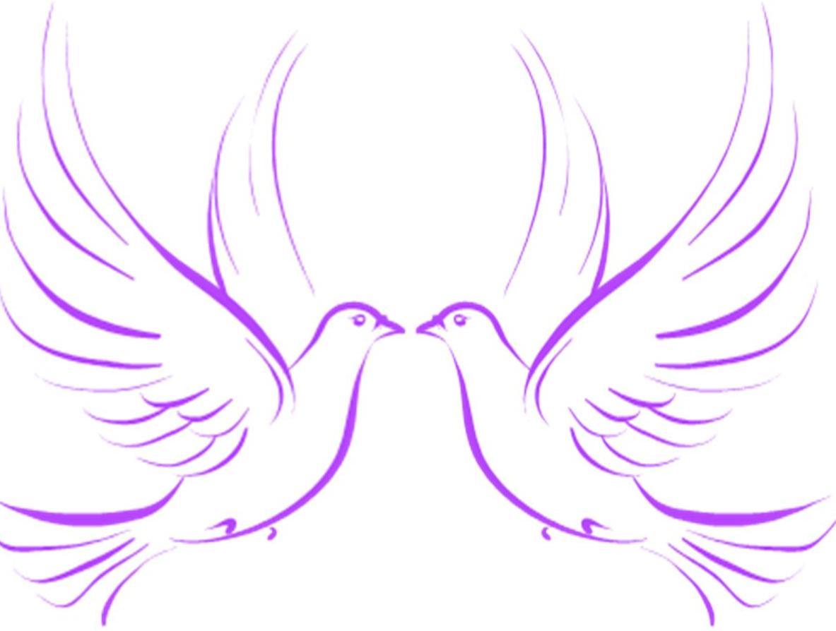 Wedding Dove PNG HD