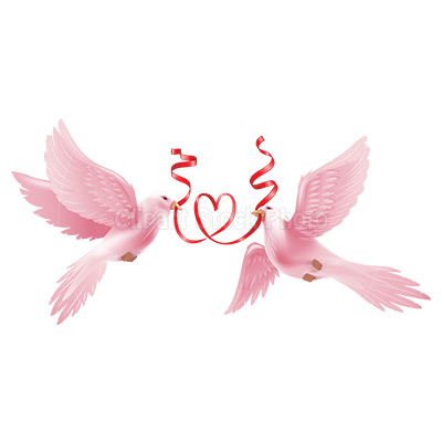 Wedding Dove PNG HD - 130613