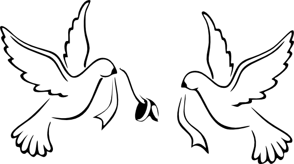 Pigeon clipart wedding #11 - Wedding Dove PNG HD