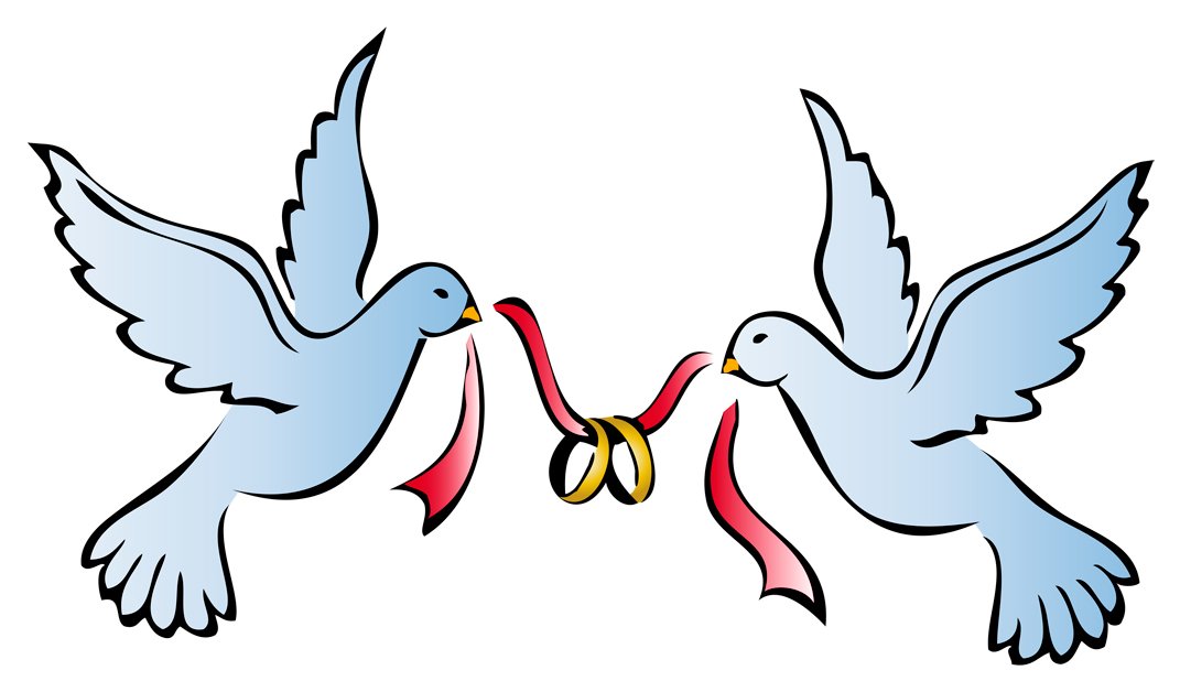 pin Dove clipart wedding bell
