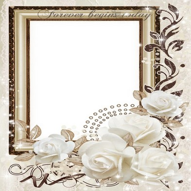 Free wedding png frame photo frame psd wedding white roses - Free download - Wedding PNG Psd Free Download