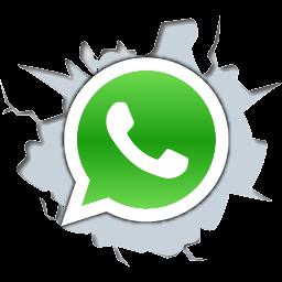 Whatsapp PNG-PlusPNG.com-256