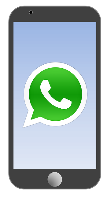 Whatsapp PNG - 19406