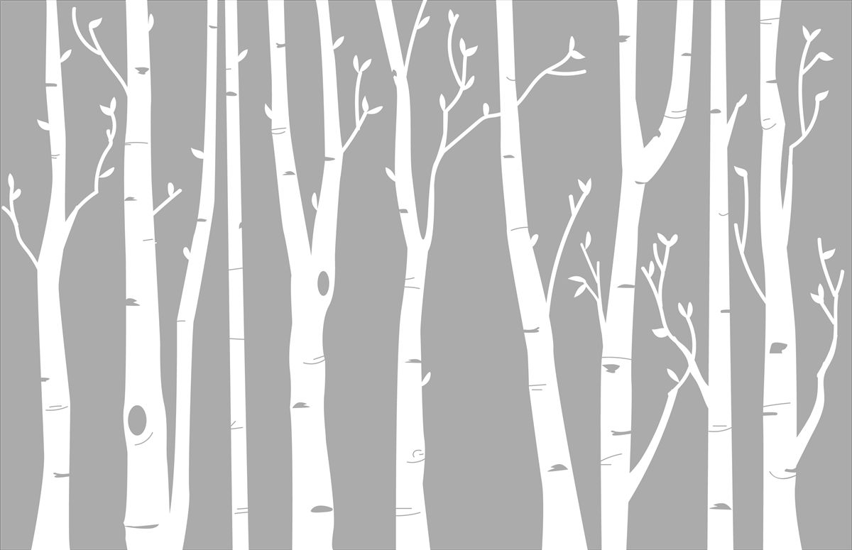 Birch Tree Wall Decal - White Birch Tree PNG