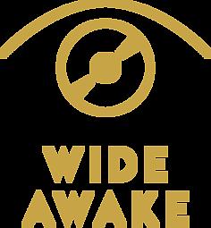 DJs PlusPng.com  - Wide Awake In Bed PNG