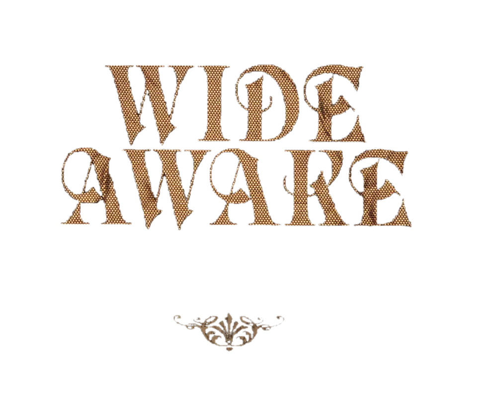 Katy Perry Wide Awake Presentacion PNG by danperrybluepink PlusPng.com  - Wide Awake In Bed PNG