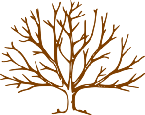 Wide Tree PNG - 55246