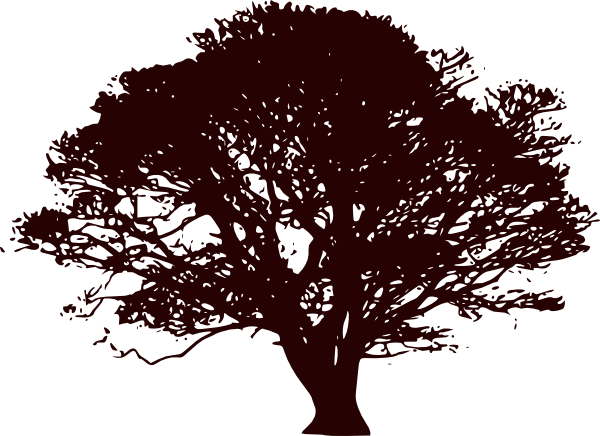PNG: small · medium · large - Wide Tree PNG