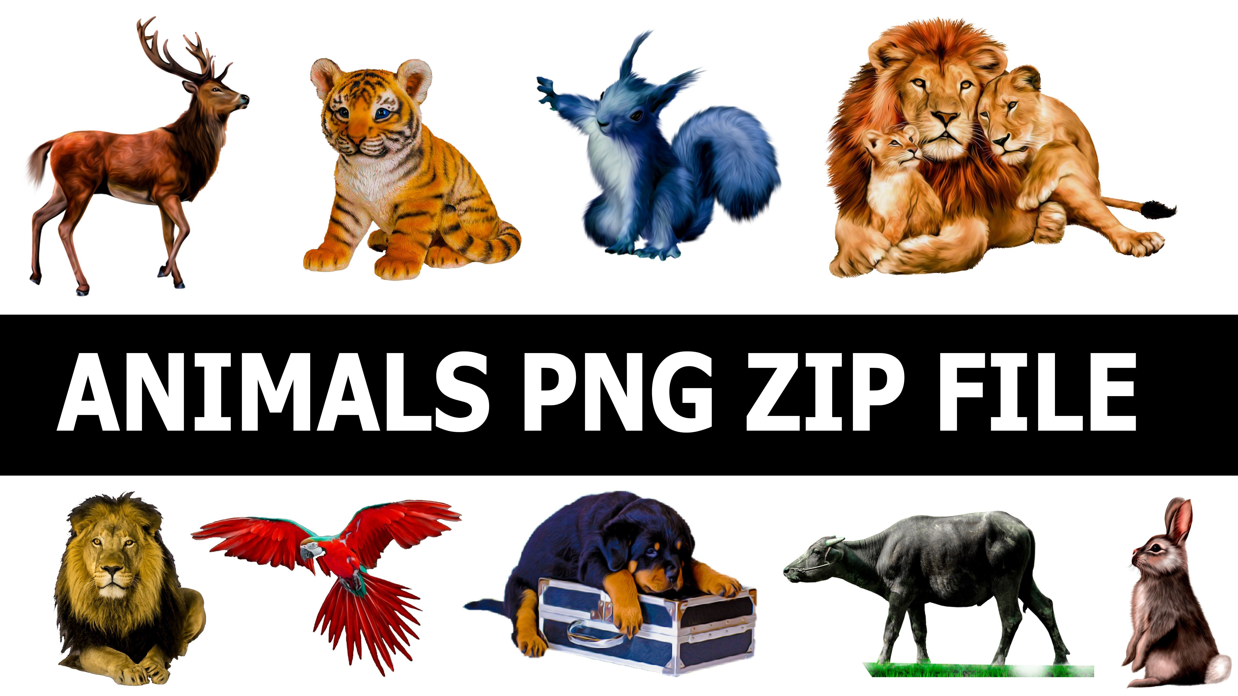 Hd Animals Png Zip File, Animal Hd Png, wild Animals png - Wild Animals PNG