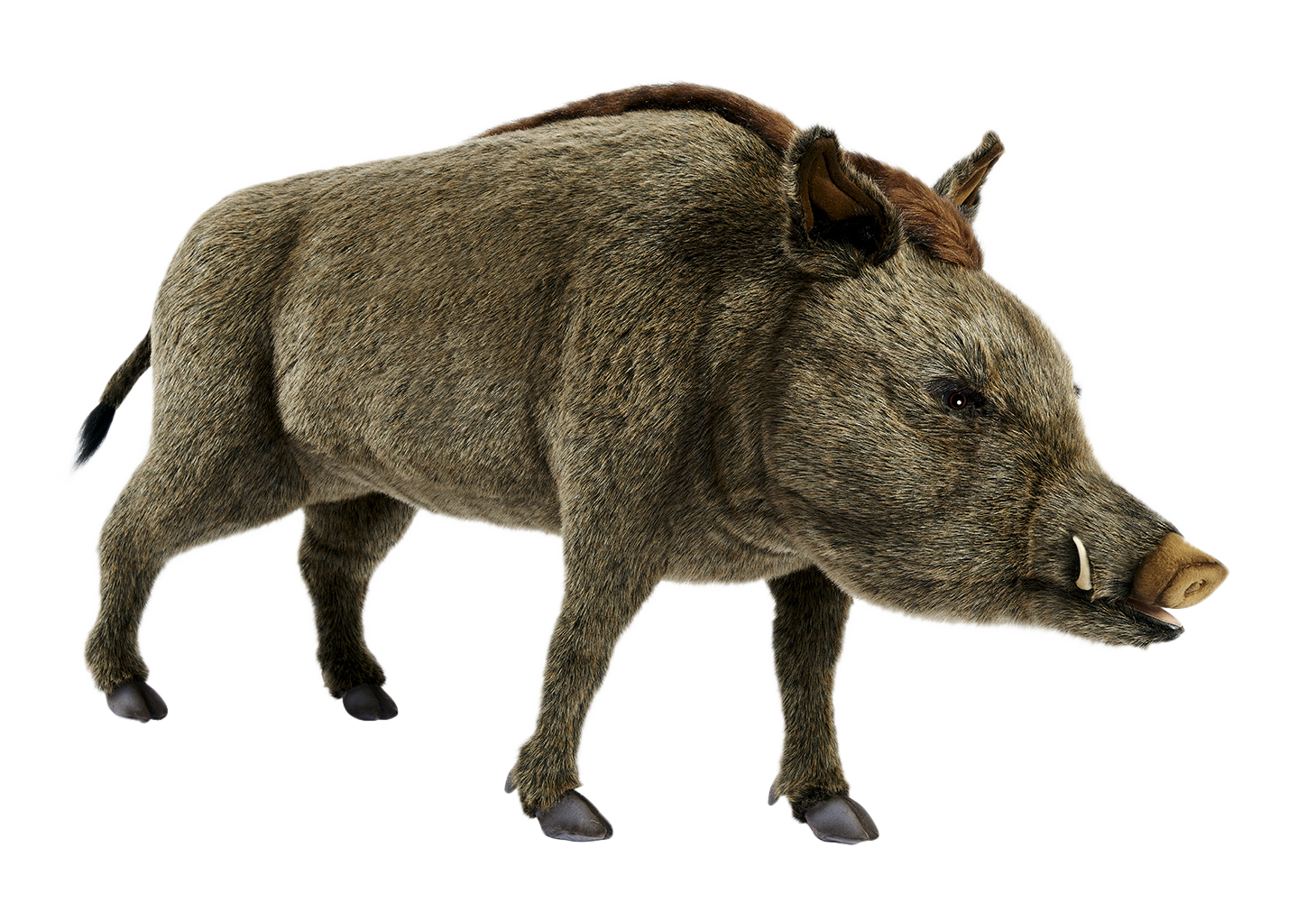 Hansa Creation Inc. | Wild Boar Standing 145 cm.L - Wild Boar PNG HD
