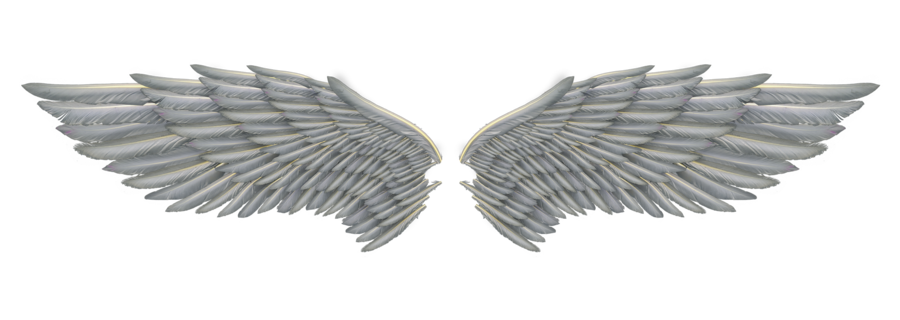 angel wings 01 by Marioara08 on Clipart library - Wings HD PNG
