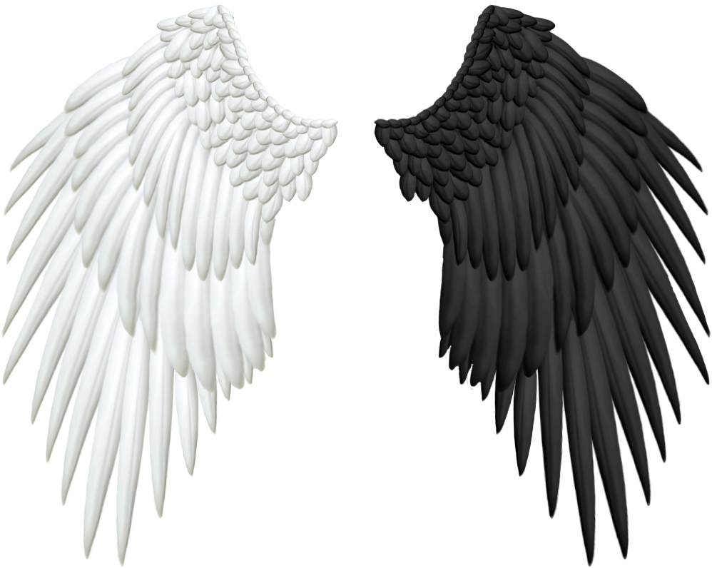 Good and Evil Angel Wings PNG by Thy-Darkest-Hour PlusPng.com  - Wings HD PNG