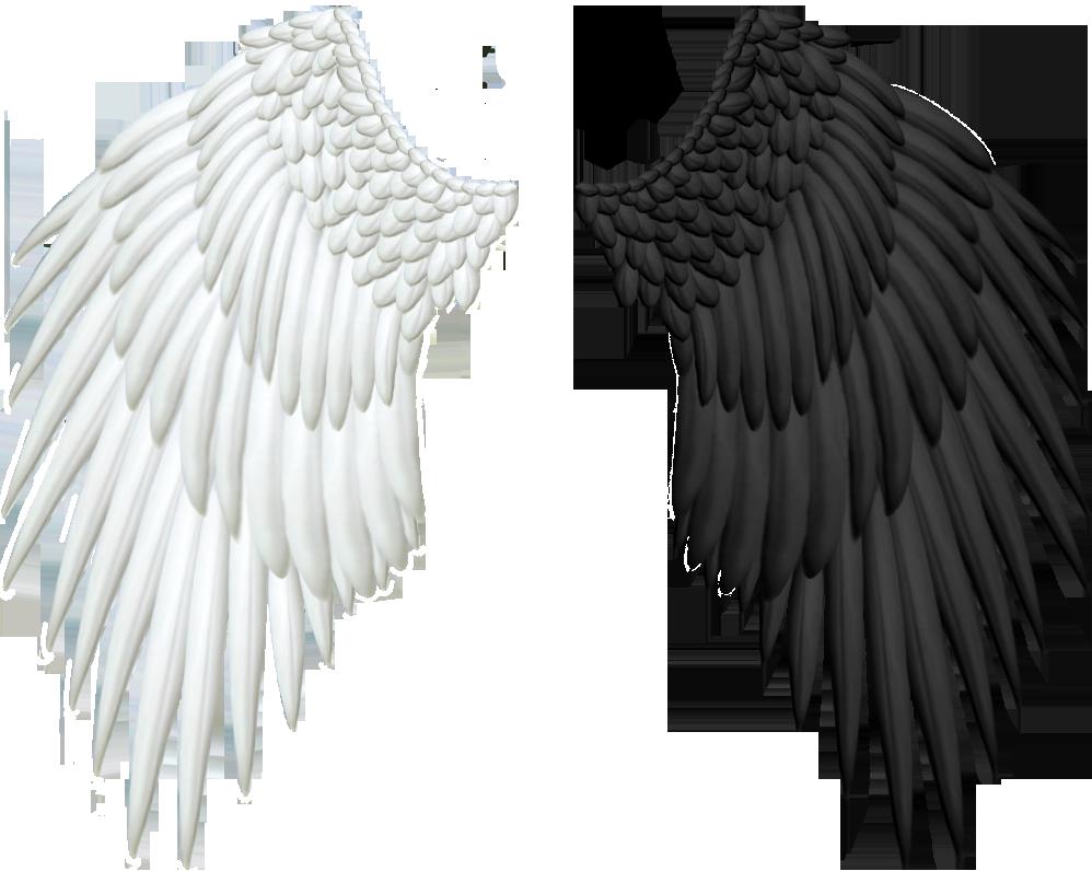 Wings HD PNG - 94837