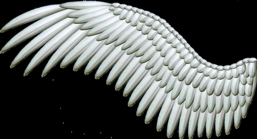 Spread Silver Wings PNG by Thy-Darkest-Hour - Wings HD PNG