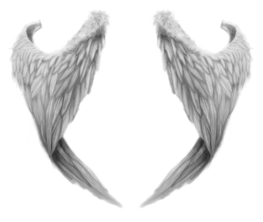 White wings PNG - Wings HD PNG