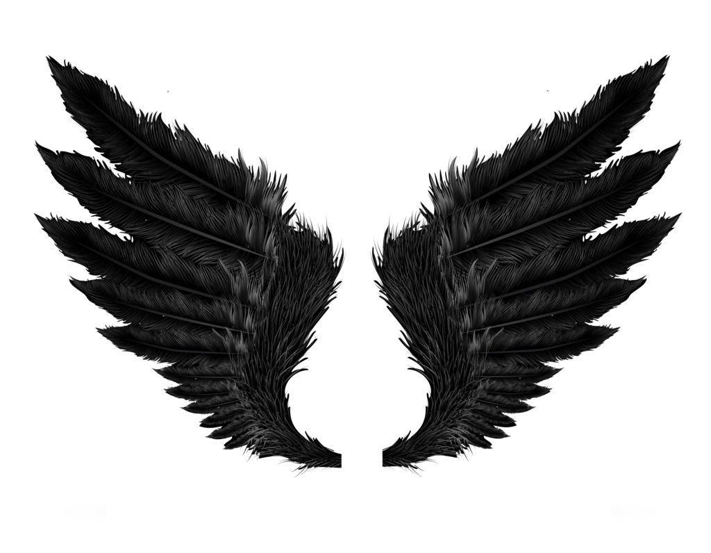 Wings HD PNG