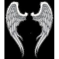Wings Tattoos PNG - 4616