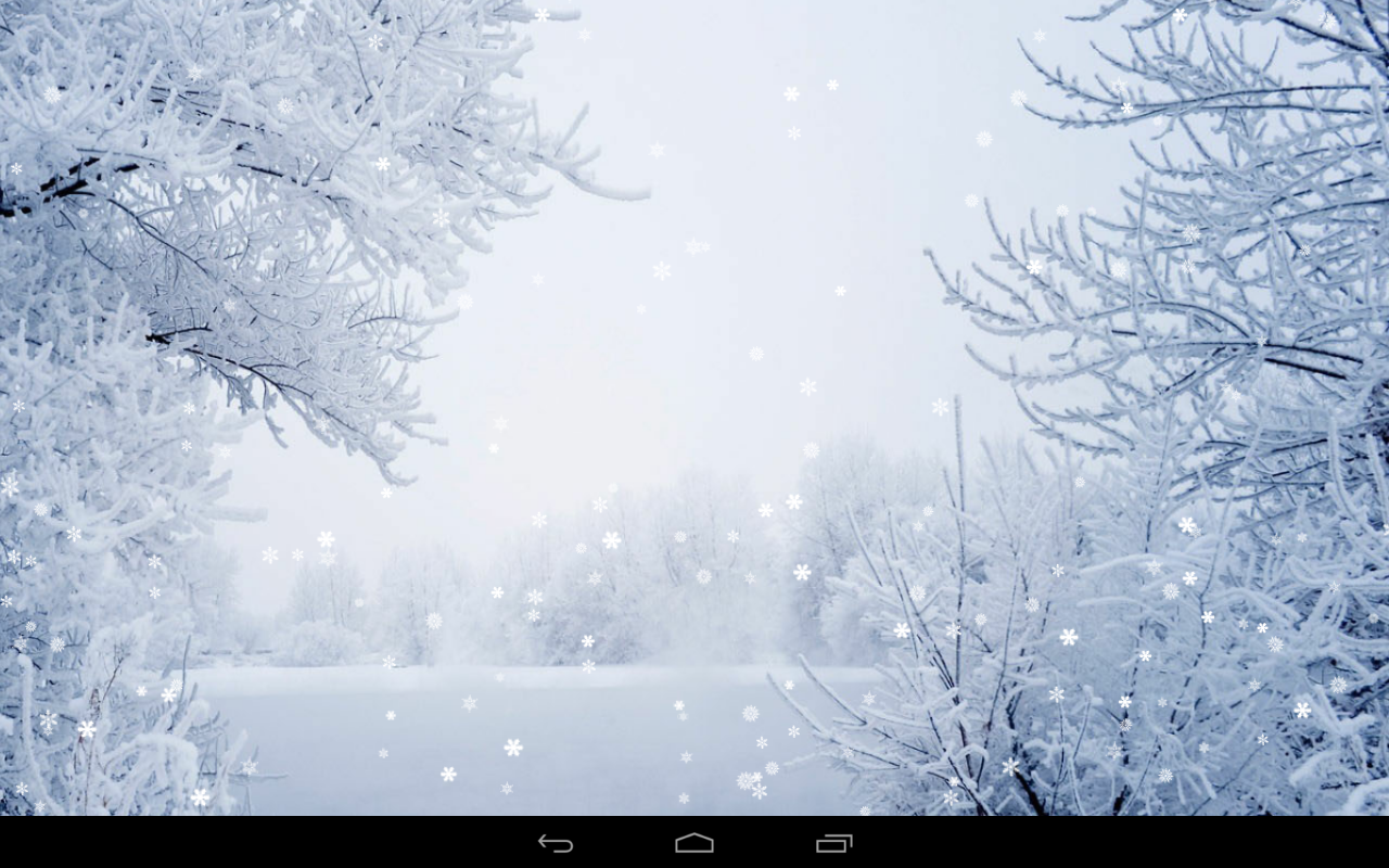 Natural Winter Wallpaper. « - Winter PNG HD