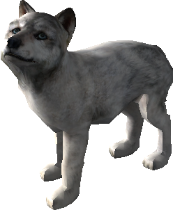 Wolf Pup PNG - 62232