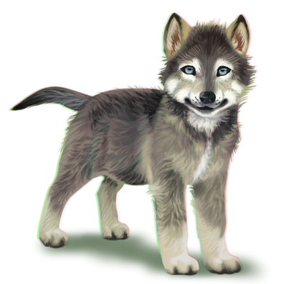 Wolf Pup PNG