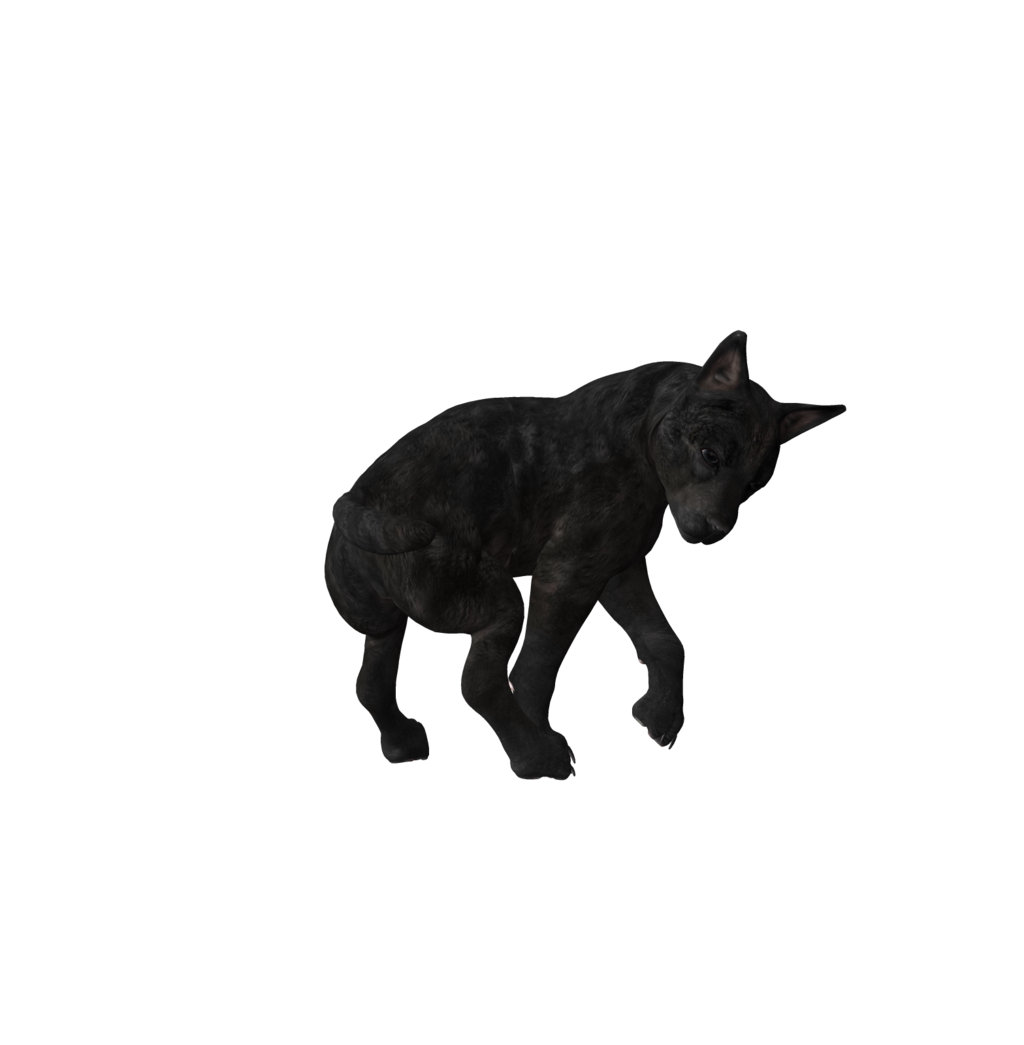 . PlusPng.com Wolf Puppy Png Stock 3 by Direwrath - Wolf Pup PNG