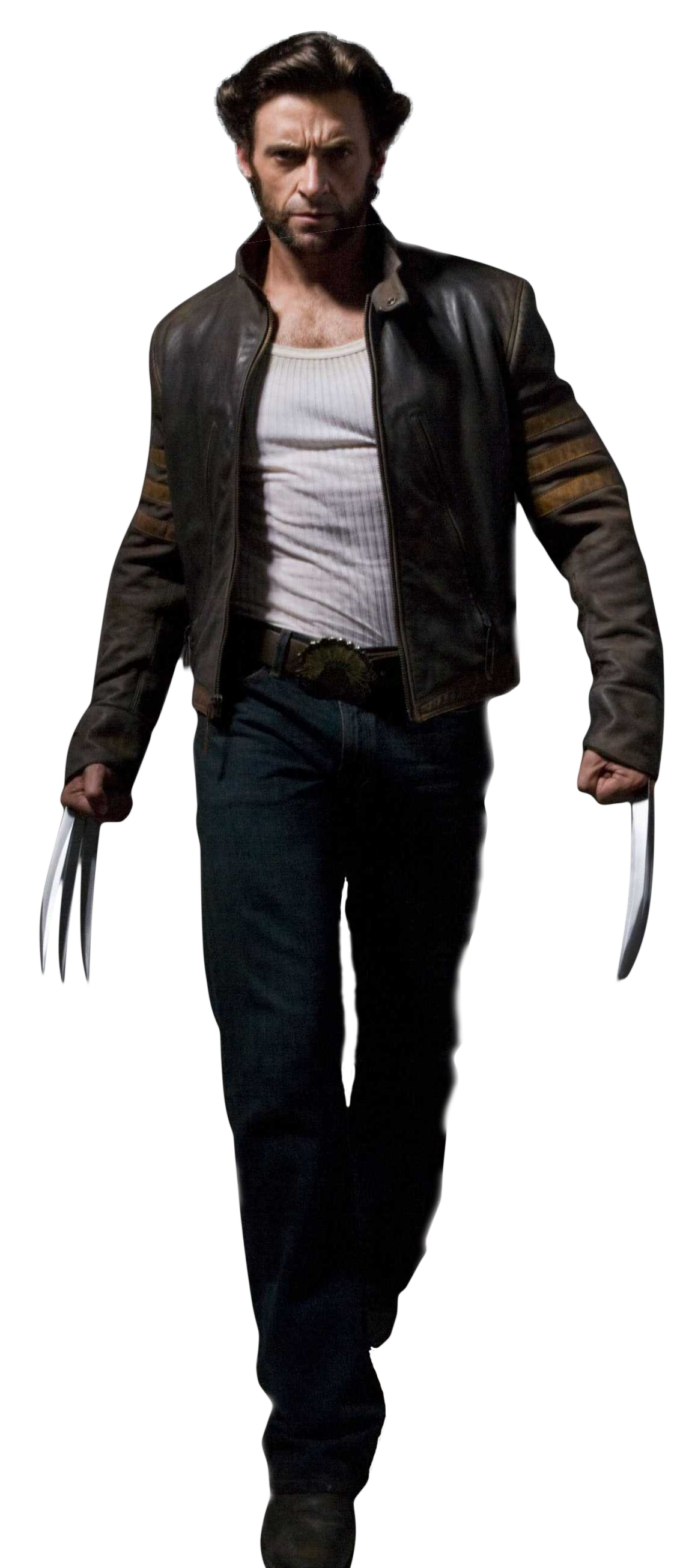 Wolverine PNG - 18529