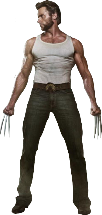 Wolverine PNG - 18537