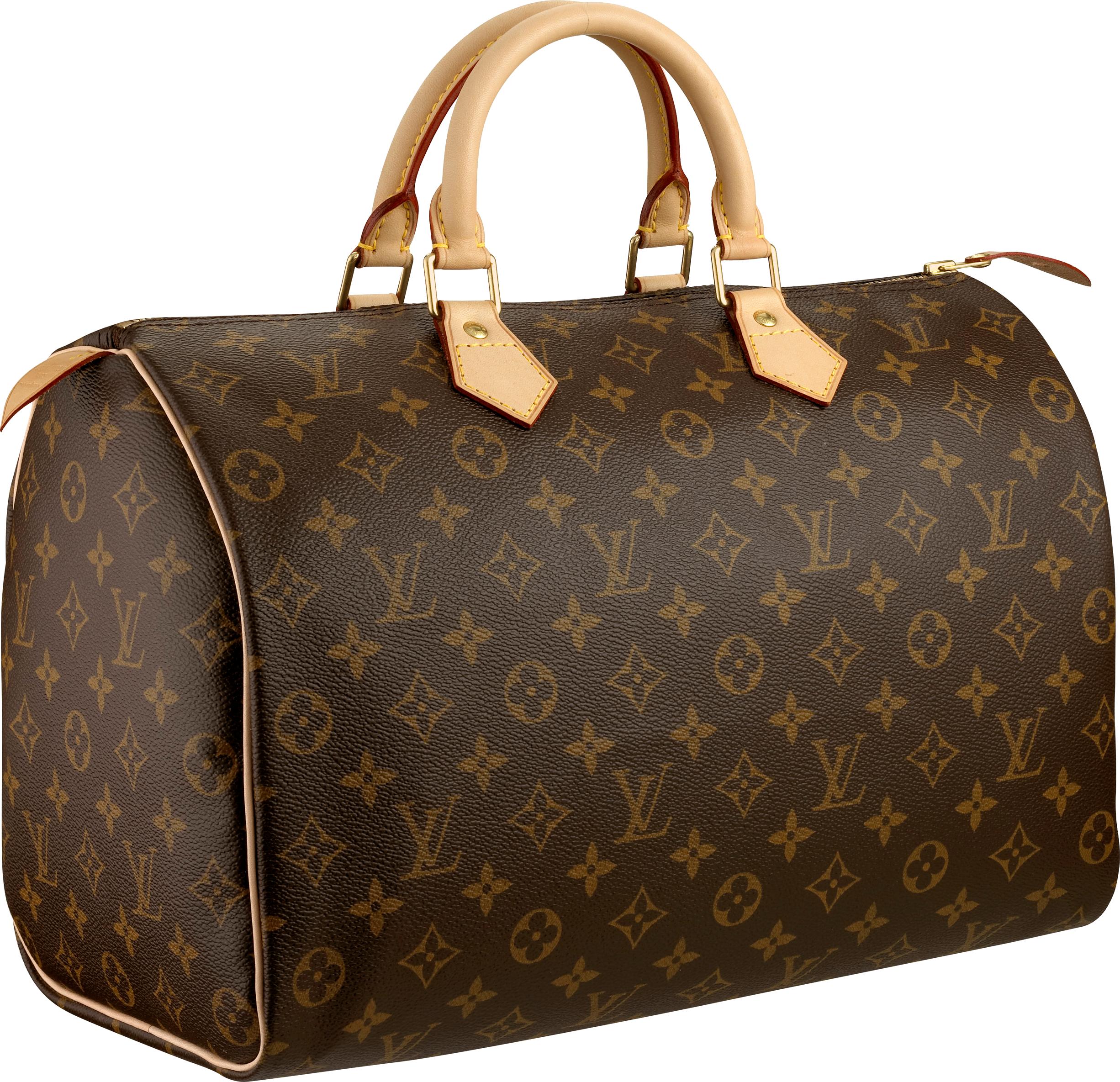 Louis Vuitton Women bag PNG image - Womensbag HD PNG