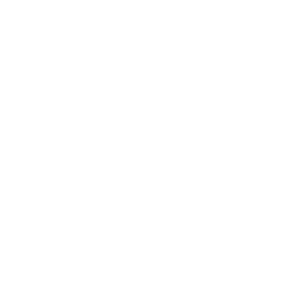 . PlusPng.com PNG (White/transparent) - Wordpress Logo PNG