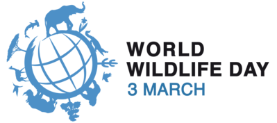 World Wildlife Day PNG-PlusPNG.com-399 - World Wildlife Day PNG