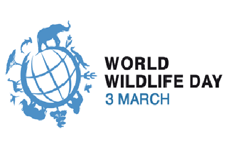 20160124-2016_wwlday.png - World Wildlife Day PNG