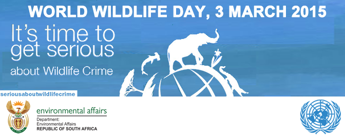 Background - World Wildlife Day PNG