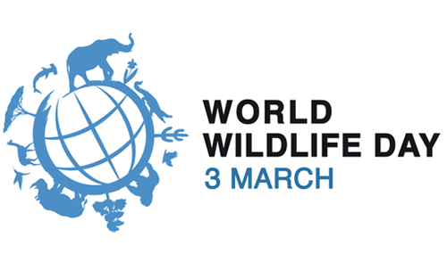 World Wildlife Day PNG