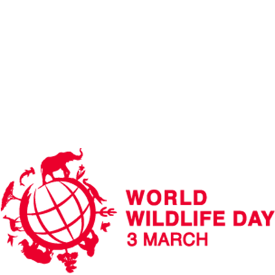 preview overlay - World Wildlife Day PNG