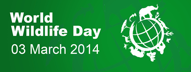 World Wildlife Day - World Wildlife Day PNG