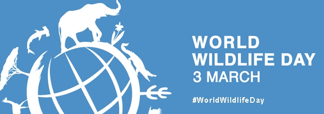 World Wildlife Day; Getting Serious About Wildlife Crime - World Wildlife Day PNG