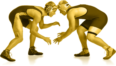 Wrestling PNG Transparent - Wrestling HD PNG