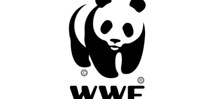 WWF-logo - Wwf Logo Vector PNG