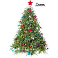 Christmas Tree Png Clipart PNG Image - X Mas Tree PNG