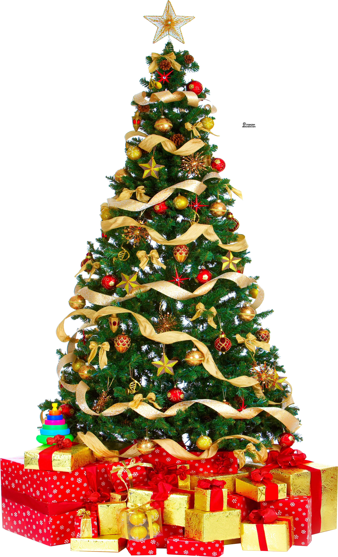 X Mas Tree PNG - 46373