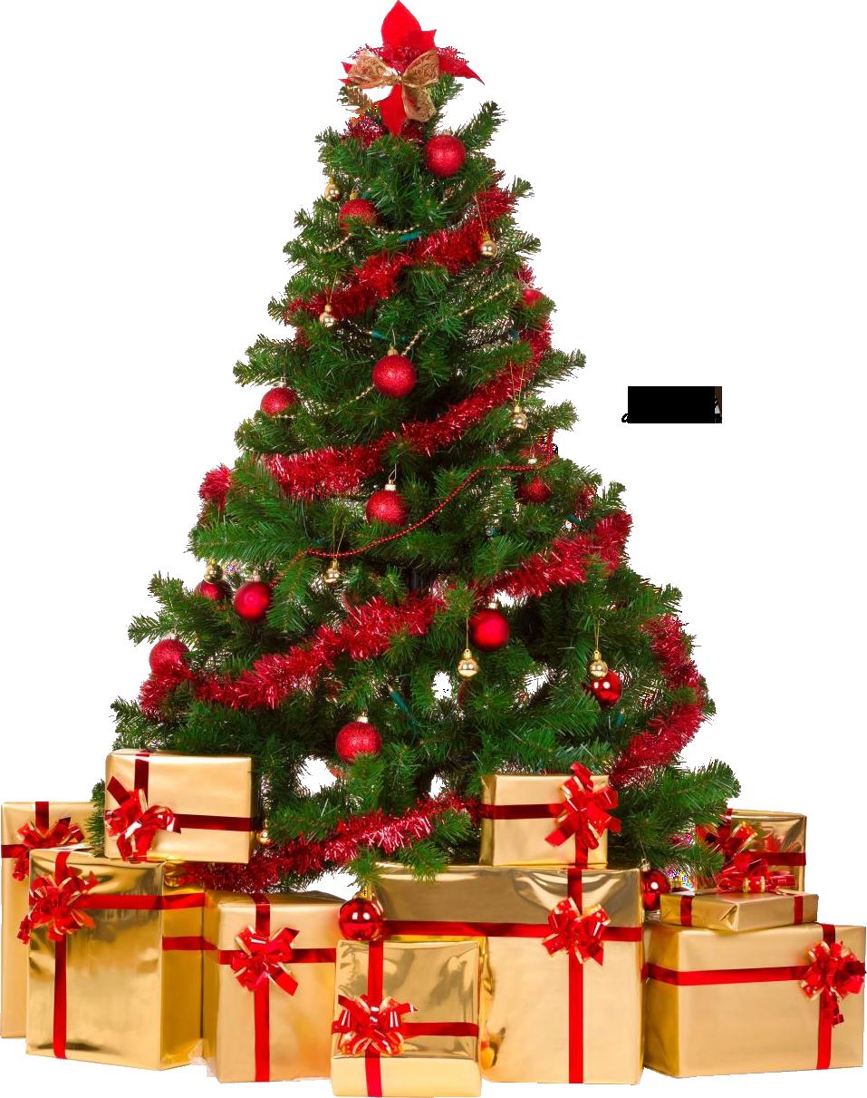 . PlusPng.com Xmas tree png 4 by iamszissz - X Mas Tree PNG