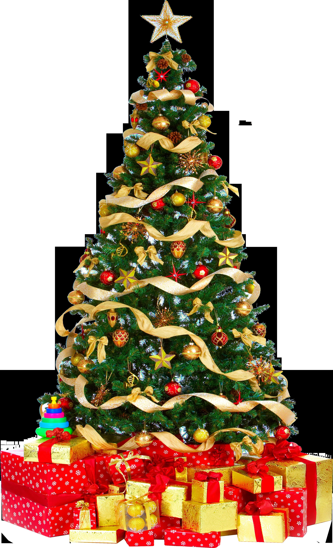 Christmas Tree PNG - 6112