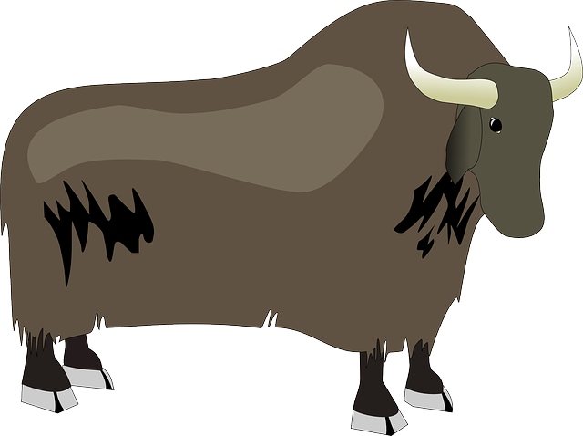 Free vector graphic: Bison, Ox, Yak, Animal, Wildlife - Free Image on  Pixabay - 48640 - Yak Animal PNG